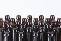 Natura morta di vetro delle bottiglie di birra di Brown su fondo bianco Fotografia Stock Libera da Diritti