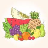 Natura morta fresca della frutta di vettore Fotografia Stock Libera da Diritti
