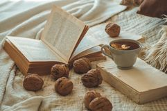 Natura morta nell'interno domestico del salone Maglioni e tazza di tè con un cono sui libri colto Concetto accogliente di inverno fotografia stock libera da diritti