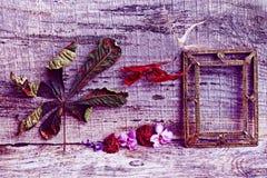 Natura morta porpora e rossa con i fiori e una cornice su fondo di legno Fotografia Stock Libera da Diritti