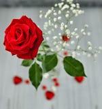 Natura morta romantica, rosa rossa, cioccolato sotto forma dei cuori su un fondo leggero Valentine& x27; concetto di giorno di s fotografie stock