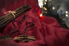 Natura morta rossa di inverno con le luci e le spezie della stella Immagini Stock Libere da Diritti