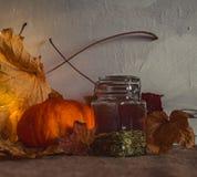 Natura morta rustica del raccolto di autunno contro una parete con gesso ruvido fotografia stock libera da diritti