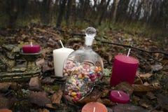 Natura morta su Halloween fotografia stock libera da diritti