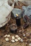 Natura morta verticale con le rune, le candele nere ed il cranio del cavallo con i denti Immagine Stock Libera da Diritti