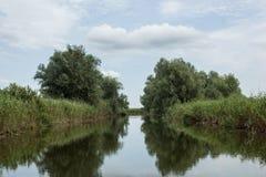 Natura na rzece Obraz Stock