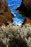 Natura na wyspie Palma Obraz Royalty Free