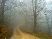 Natura nebbiosa Fotografia Stock Libera da Diritti