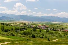 Natura nella regione di Liptov, Slovacchia di estate 2015 Immagine Stock