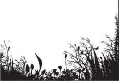 Natura organico illustrazione vettoriale