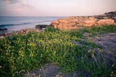 Natura Północny Cypr zdjęcie royalty free