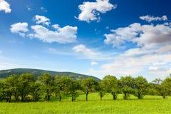 Natura, paesaggio Fotografia Stock Libera da Diritti