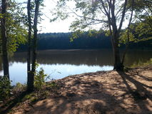 Natura parka drzewa i rzeka Obraz Stock
