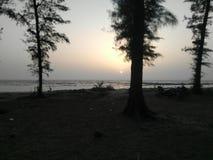 Natura plaży stroną obraz stock
