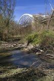 Natura pod mostem zdjęcie royalty free
