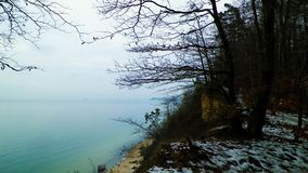 Natura polacca - foresta del witer e Mar Baltico fotografia stock