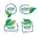 Natura produkt, doodle organicznie zielonych liści emblematy, majchery Zdjęcia Royalty Free
