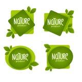 Natura produkt, organicznie zieleń opuszcza emblematy, majchery, fram Obrazy Stock