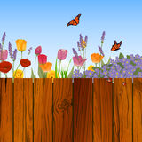 Natura projekt Obraz Stock