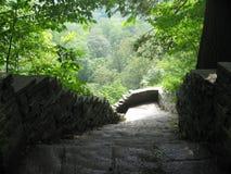 natura schodki Zdjęcie Royalty Free