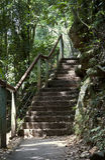 Natura schody Fotografia Stock