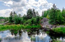 Natura selvaggia del Canada, fiume, foresta, cielo blu Fotografie Stock Libere da Diritti