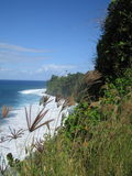 Natura selvaggia del litorale Fotografie Stock