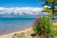 Natura selvaggia della Mongolia Una bella vista del lago Hovsgol e il Sayan orientale Ridge Fotografie Stock Libere da Diritti