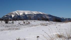 Natura selvaggia della montagna di Snowy Sharr immagine stock libera da diritti