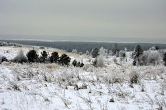 Natura Siberia di inverno fotografia stock
