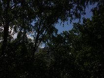 Natura Sierpień Fotografia Royalty Free