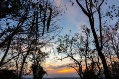 Natura, stagione, fondo Fotografia Stock Libera da Diritti
