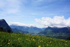 Natura in Svizzera Fotografie Stock