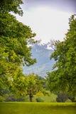 Natura svizzera meravigliosa nella primavera Immagine Stock