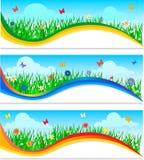 Natura sztandary ustawiający royalty ilustracja