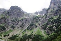 Natura in Tatras Fotografia Stock Libera da Diritti