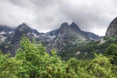 Natura in Tatras Immagini Stock Libere da Diritti