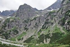 Natura in Tatras Fotografia Stock