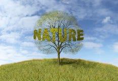 Natura tekst na drzewie royalty ilustracja
