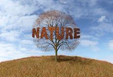 Natura tekst na drzewie ilustracja wektor