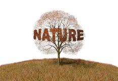 Natura tekst na drzewie ilustracji