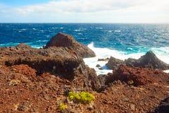 Natura Tenerife Fotografia Stock
