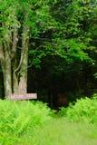 Natura Trailhead Zdjęcia Stock