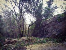 Natura - Tunisia - drahem ain fotografia stock