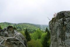 Natura in Tustan Immagini Stock