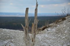 Natura Ukraina obrazy stock