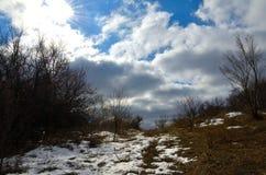 Natura Ukraina fotografia stock