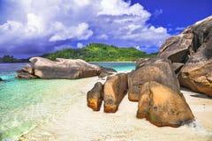 Natura unica delle isole delle Seychelles fotografia stock libera da diritti