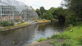 Natura urbana di Amsterdam di hortus del fiume Fotografia Stock
