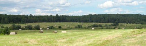 Natura verde all'aperto di estate del campo di agricoltura rossa del granaio del paesaggio del paese Fotografia Stock Libera da Diritti
